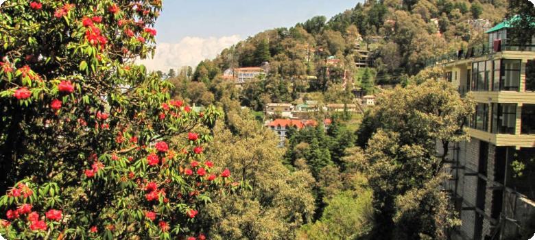 Beautiful Dalhousie hillside Himachal Pradesh