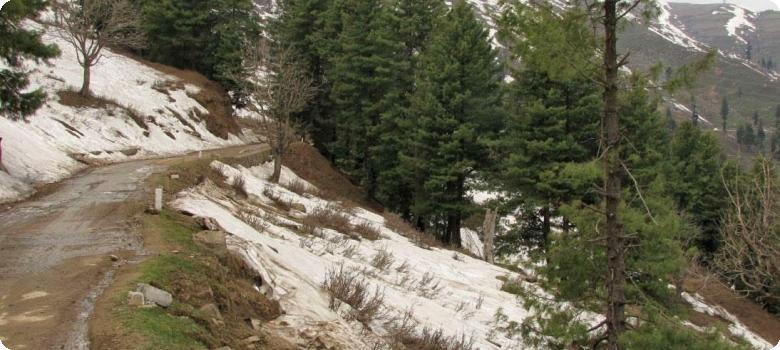 Snow point on way to Nathatop, Patnitop