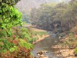 Sweet meandering river Koina, Manoharpur