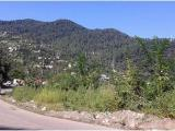 Leaving Patnitop towards Pahalgam Kashmir