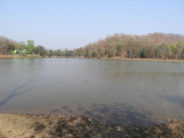 Beautiful Nagzira lake, Maharashtra