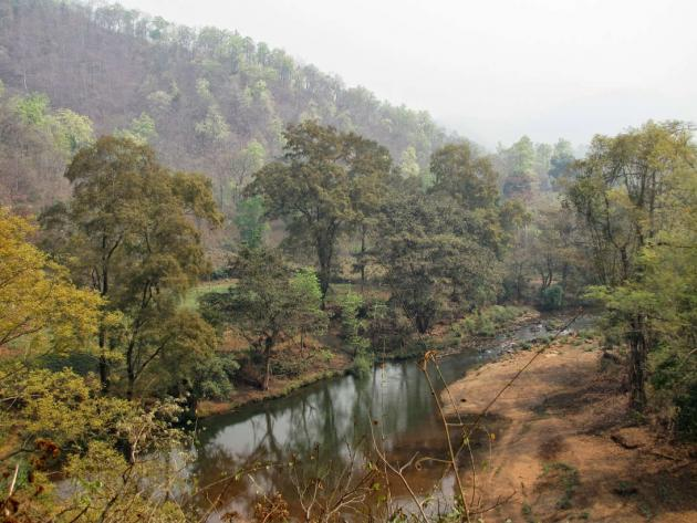 Calm river Koina