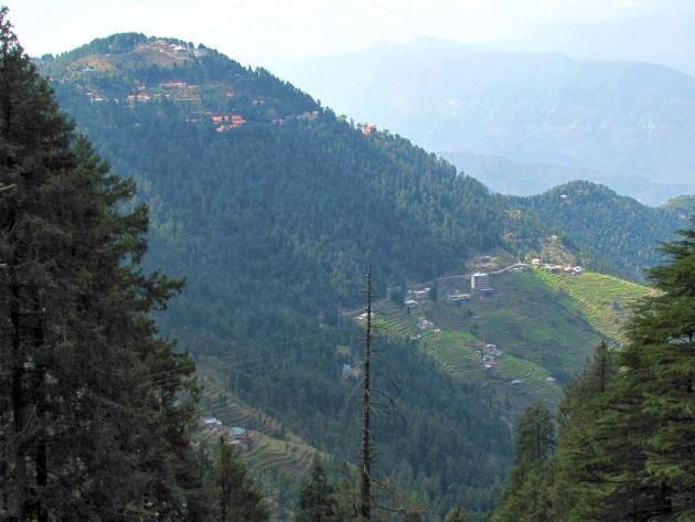 Close view of Kalatop