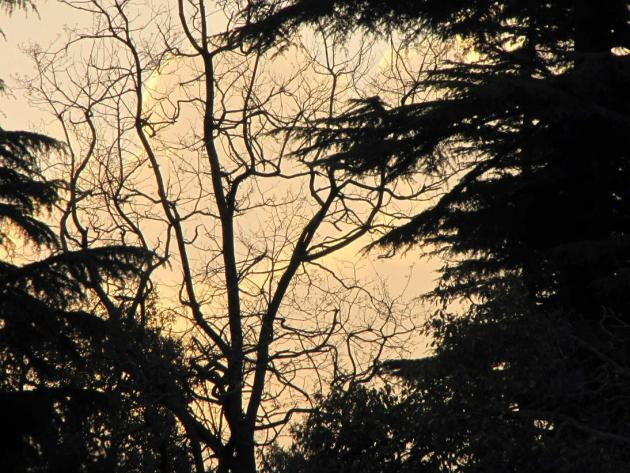 Dusk at Dalhousie