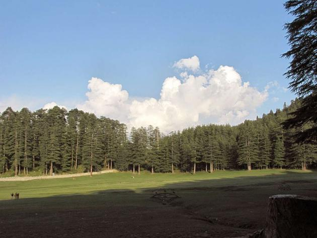 Lingering sunrays at Khajjiar meadows