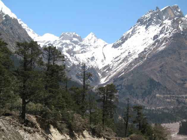 Looking front side of Yumthang valley